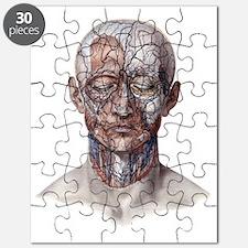 science human skeleton puzzles, science human skeleton jigsaw, Skeleton