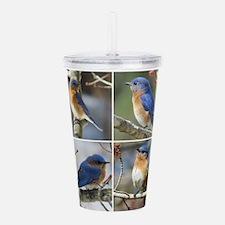 Unique Bluebird Acrylic Double-wall Tumbler