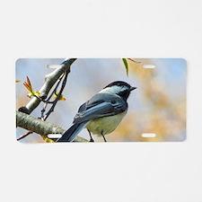 Spring Chickadee Aluminum License Plate