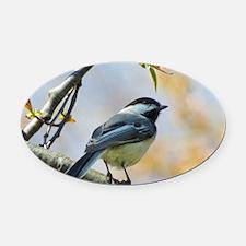 Spring Chickadee Oval Car Magnet