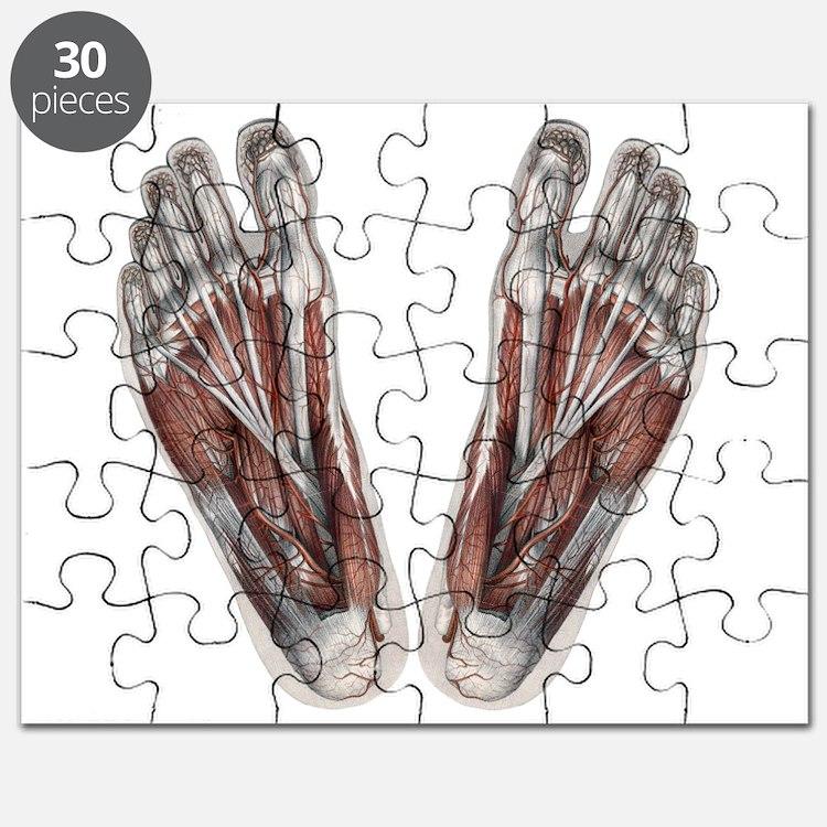 Human Skeleton Jigsaw Puzzle Tenderness