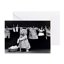 Laundry Kitten Card Greeting Cards