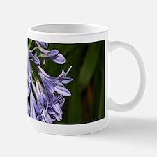 Blue purple agapanthus flower in bloom in gar Mugs