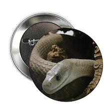 "Black Mamba Snake 2.25"" Button (100 pack)"