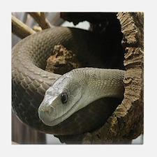 Black Mamba Snake Tile Coaster