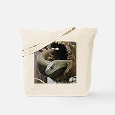 Black Mamba Snake Tote Bag