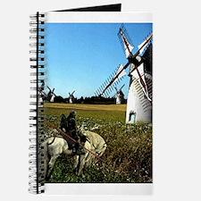 Quixote Journal