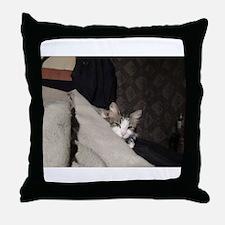 Flicker In Bed Throw Pillow