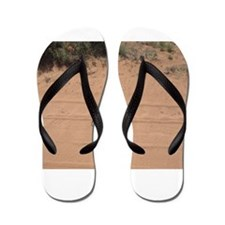 A Snake Flip Flops