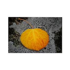 Perfect Aspen Leaf Rectangle Magnet