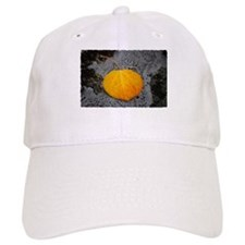 Perfect Aspen Leaf Baseball Cap
