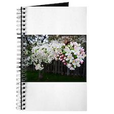 Unique Nature landscap Journal