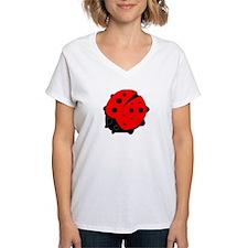 Ladybug on a T-Shirt