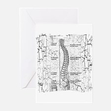 """Crackle Back/D.C."" Greeting Cards (Pk of 20)"