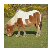 New Forest Pony Tile Coaster