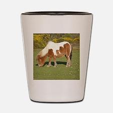 New Forest Pony Shot Glass