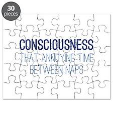 Consciousness Puzzle