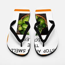 pickle Flip Flops