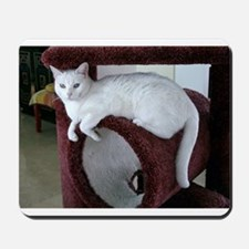 TURKISH VAN CAT Mousepad