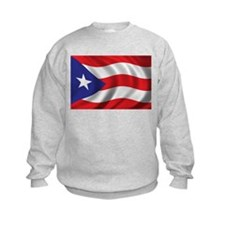 Puerto Rico Flag (bright) Sweatshirt