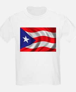 Puerto Rico Flag (bright) T-Shirt