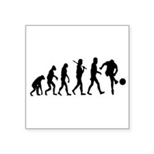 Soccer Evolution Sticker