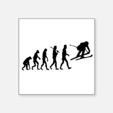 Skiing Evolution Sticker
