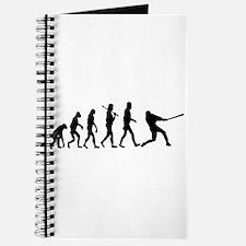Baseball Batter Evolution Journal