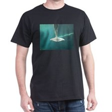 A whale of a tail! T-Shirt
