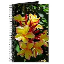 Hawaiian Plumeria Journal