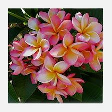 Hawaiian Plumeria Tile Coaster