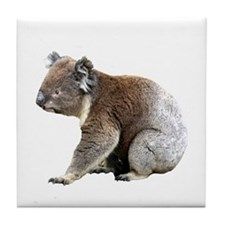 Aussie Koala Bear Cutout Photo Tile Coaster