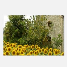 Sunflower Radiance Postcards (Package of 8)