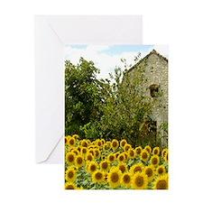 Sunflower Radiance Greeting Cards