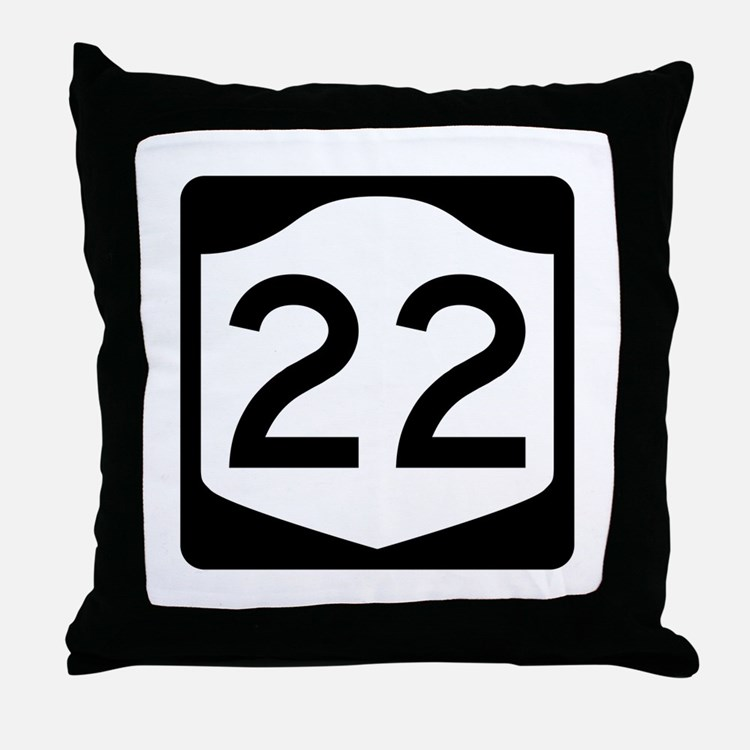 State Route 22, New York Throw Pillow