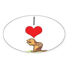 Chipmunk Oval Decal