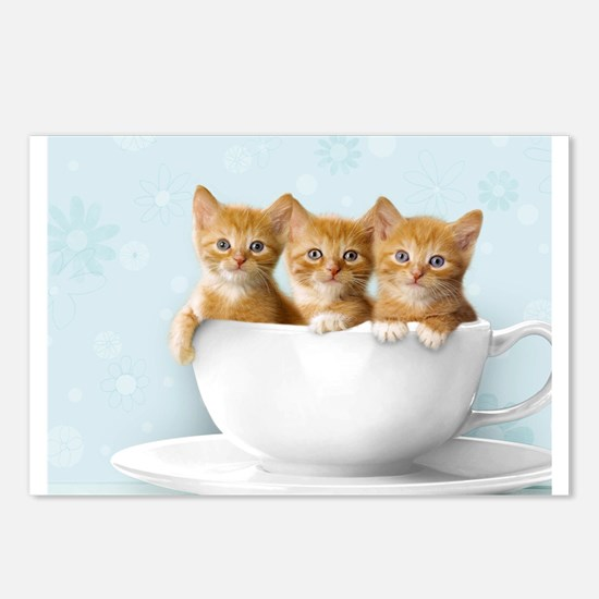 Kittens Postcards (Package of 8)
