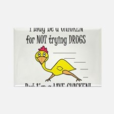 LIVE CHICKENS DON'T TRY DRUGS Rectangle Magnet