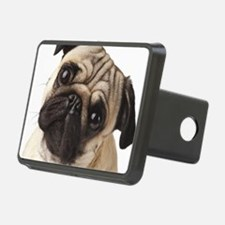 Curious Pug Hitch Cover