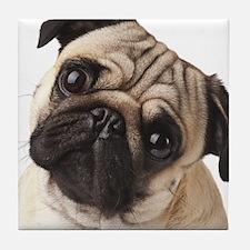 Curious Pug Tile Coaster