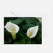 Calla Lilies Greeting Cards