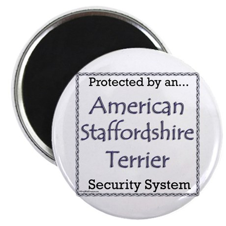 Am Staff Security Magnet