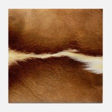 Antelope Fur Tile Coaster
