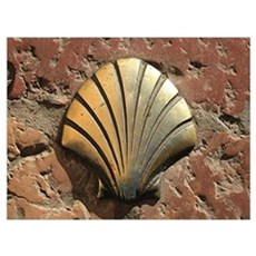 Gold El Camino shell sign, pavement, Leon, Spain Poster