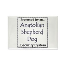 Anatolian Security Rectangle Magnet