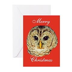 Christmas Owl Greeting Cards (Pk of 20)