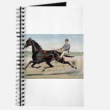 larness racing art Journal