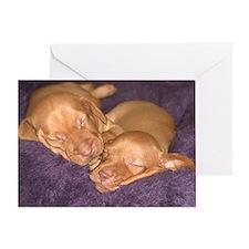 Cute Vizsla Puppies Greeting Card