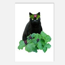 Black Cat Flowers Postcards (Package of 8)