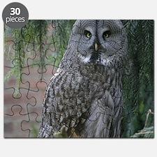 Owl_2015_0203 Puzzle